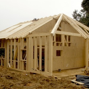Domy z drewna (1)