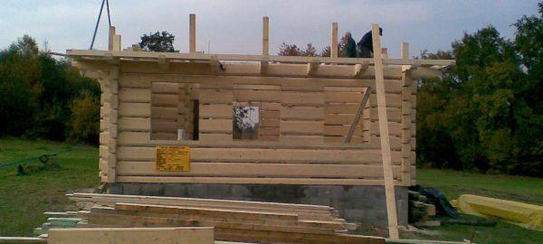 Budowa domów drewnianych i szkieletowych